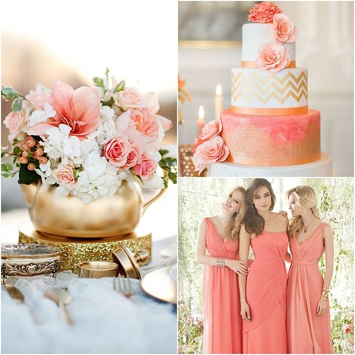 Coral reef color wedding decorations junglespirit Images