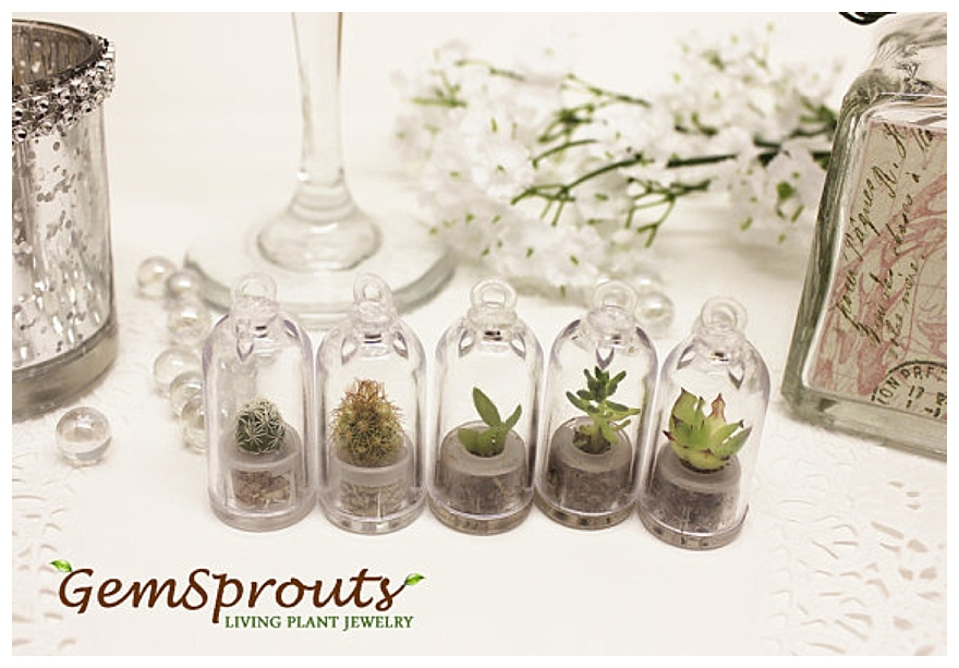Wedding Party Gifts Uk: Wedding Favors Ideas