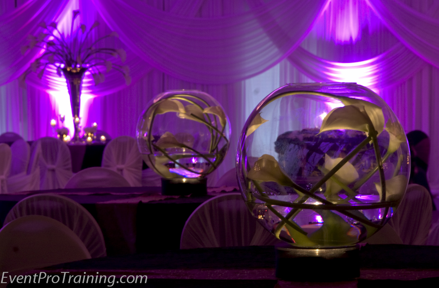 ... Black And Purple Wedding Decoration Ideas Wedding Decor Ideas ... & Black And Purple Wedding Theme Images - Wedding Decoration Ideas