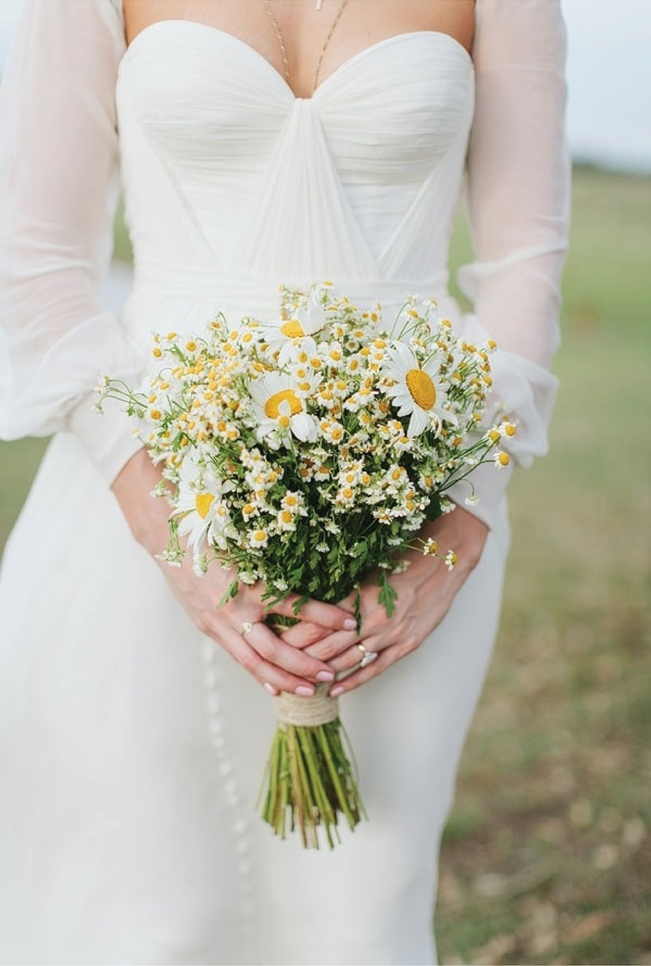 Daisy Flower Bouquet Wedding On Flowers With Blushing