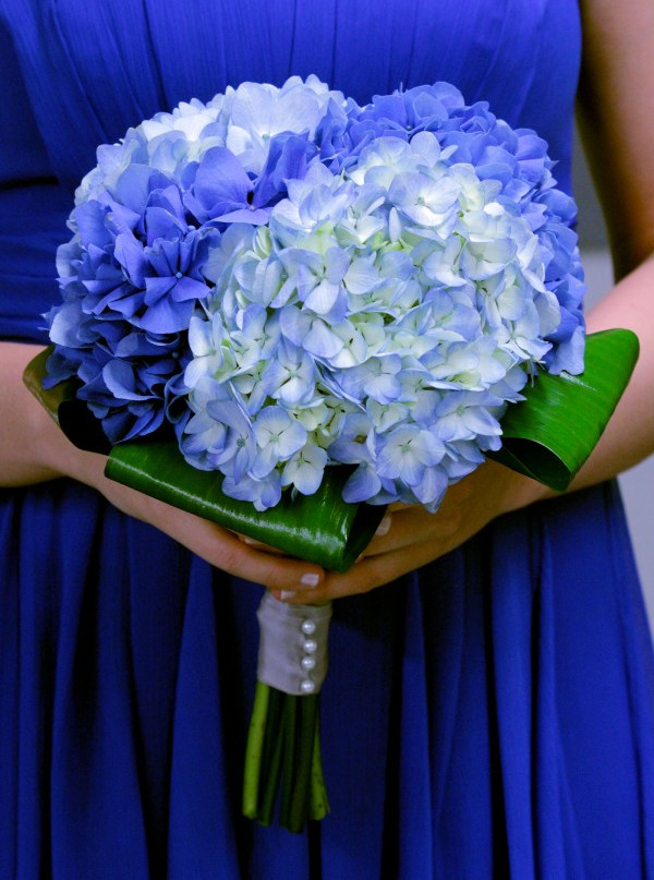Blue flowers for wedding flowers for weddings at stylesnatcher wedding decoration and theme junglespirit Gallery