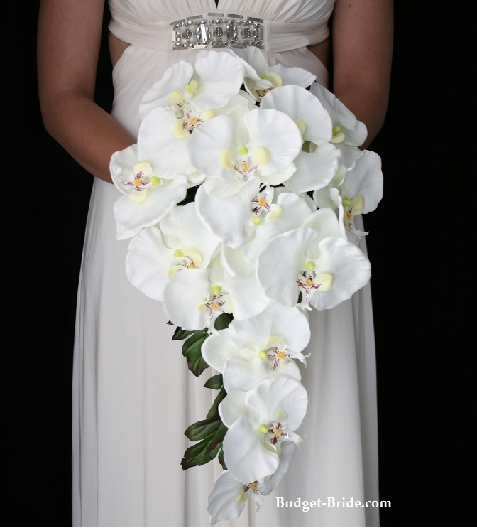 Phalaenopsis Orchid Wedding Bouquet
