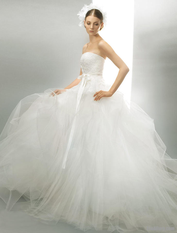 Ball Gown Wedding Dresses with Tool