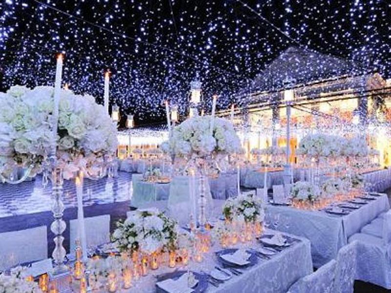 Wedding themes for winter choice image wedding decoration ideas winter wonderland wedding theme therapyboxfo junglespirit Image collections