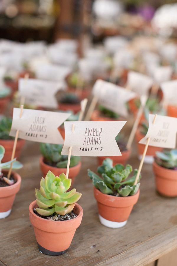 Mini Succulents Wedding Favors Wedding Decor Ideas