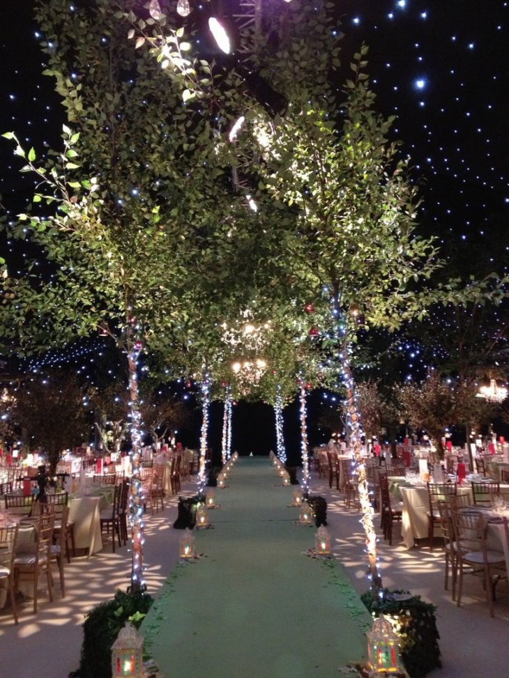 Wedding Fairy Lights