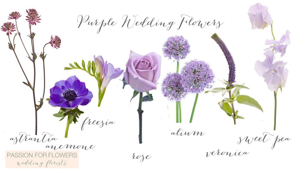 Purple Wedding Flowers Flowers1