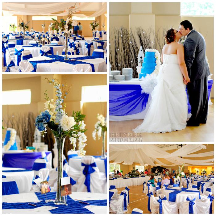 Royal blue and ivory wedding decorations junglespirit Choice Image