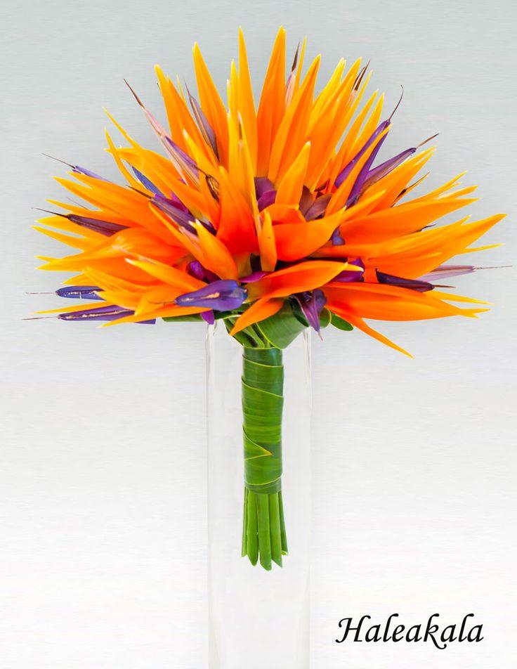 tropical bridal bouquets » Beautiful Flowers 2019 | Beautiful Flowers