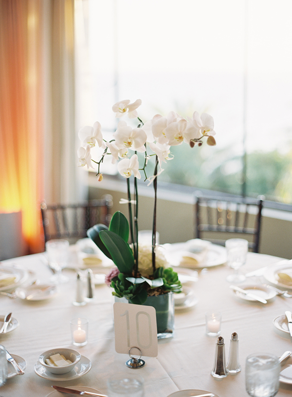 Orchid centerpieces for weddings