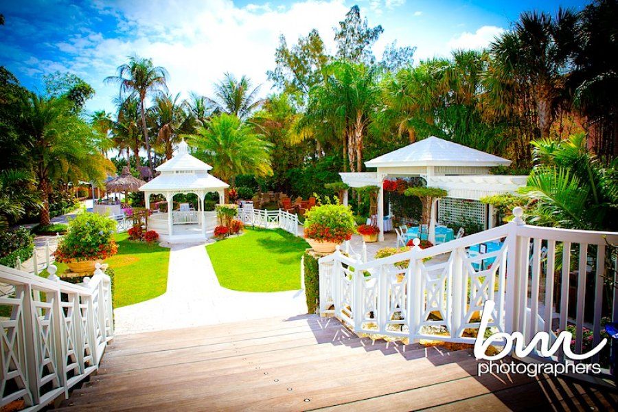 Wedding venues in miami junglespirit Choice Image