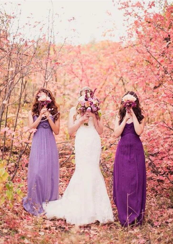 Purple And Lavender Wedding
