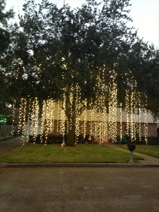Genial 17 Best Ideas About Backyard Wedding Lighting On Emasscraft Org