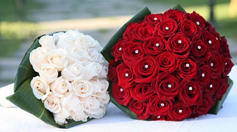 Unusual red and white flowers meaning images images for wedding comfortable red and white flowers meaning contemporary images for mightylinksfo Images