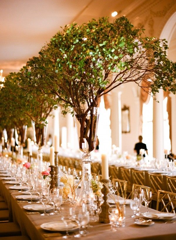 Tree Wedding Decorations Image Collections Decoration Ideas
