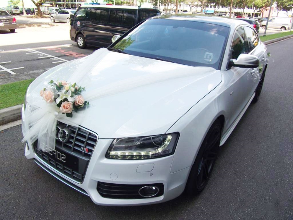 Decorating a wedding car ideas junglespirit Choice Image